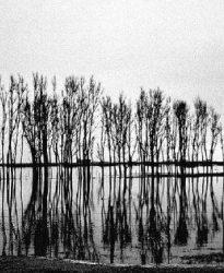La mirada y la palabra III – Invitado: Eduardo Longoni